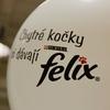 Felix promotion